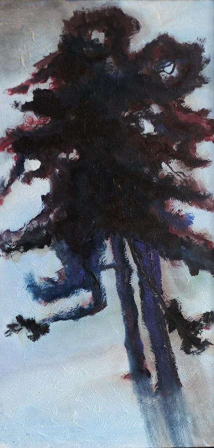 The Encyclopedia of tree : cedar