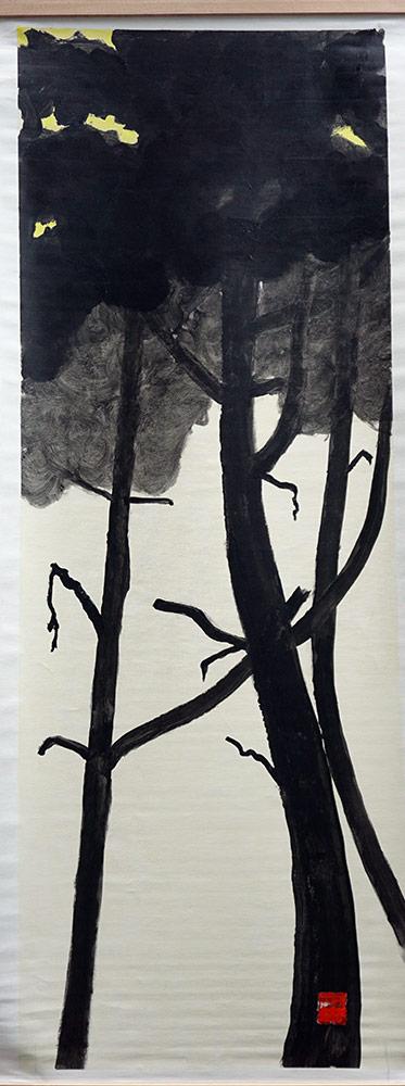 La nature et ses ombres 12